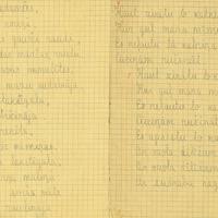 1383-Berkenes-pamatskola-1-0003