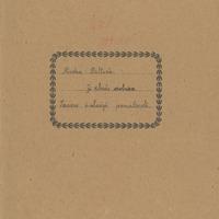 1630-Sesavas-pamatskola-01-0170