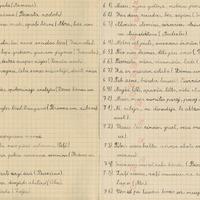 1659-Rites-pamatskola-0011