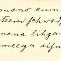 daina-186453