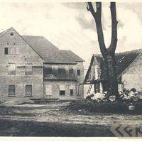 1884_19
