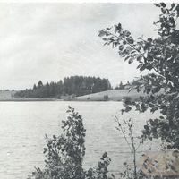 19580002