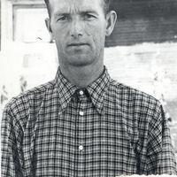 Jānis Daukste