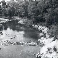 19640036