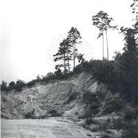 19640038