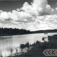 19640039