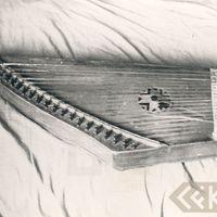 The kokle