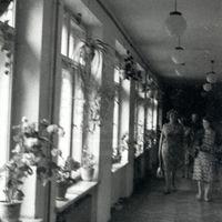 19670015