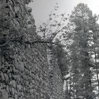 19670019