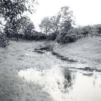 Bērsteles upe