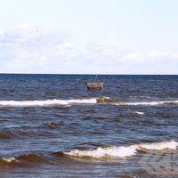 Jūras murds