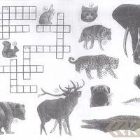 Mīklu ilustrācijas