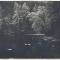 Lake Sapņu