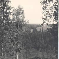Hill Milzu in Talsi