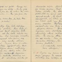 1880-zinatniska-ekspedicija-Bauska-01-0008