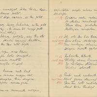 1880-zinatniska-ekspedicija-Bauska-01-0015