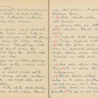 1880-zinatniska-ekspedicija-Bauska-01-0074