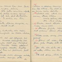 1880-zinatniska-ekspedicija-Bauska-01-0075
