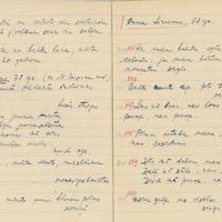 1880-zinatniska-ekspedicija-Bauska-01-0103