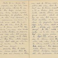 1880-zinatniska-ekspedicija-Bauska-01-0105