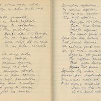 1880-zinatniska-ekspedicija-Bauska-01-0126