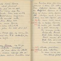 1880-zinatniska-ekspedicija-Bauska-01-0127