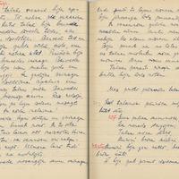 1880-zinatniska-ekspedicija-Bauska-01-0133