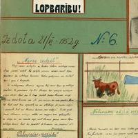 1895-6-zinatniska-ekspedicija-24-0001