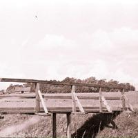 2184-Vaira-Strautniece-foto-0002n