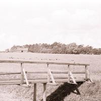 2184-Vaira-Strautniece-foto-0003n