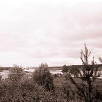 2184-Vaira-Strautniece-foto-0004n
