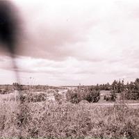 2184-Vaira-Strautniece-foto-0008n