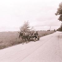 2184-Vaira-Strautniece-foto-0013n