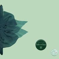991230-01v-Berniba