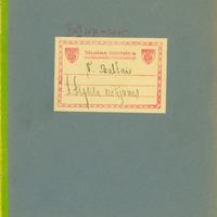 0935-Arvids-Aizsils-05-0001