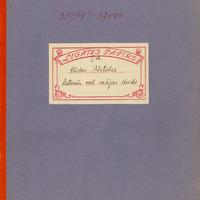 0935-Arvids-Aizsils-39-0001