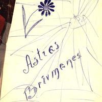 Astras Sležes dienasgrāmata