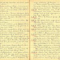 Ak26-Alvila-Kalniesa-dienasgramata-01-0016