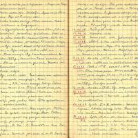 Alvila Kalnieša (Klēbaha) dienasgrāmatas