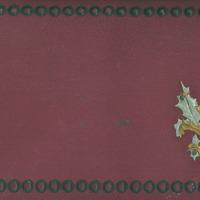 Veltai Līvijai Upeniecei veltīts atmiņu albums