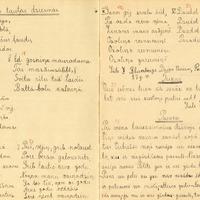 1164-Puzes-otra-pamatskola-0004