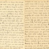 1164-Puzes-otra-pamatskola-0007