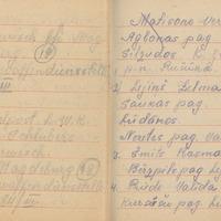 Ak137-Lucijas-Slubers-dienasgramata-01-0013