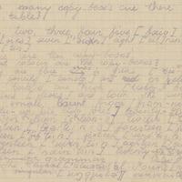 Ak137-Lucijas-Slubers-dienasgramatas-03-0032