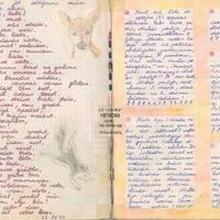 Ak6-Ilzes-Spergas-dienasgramatas-01-0003