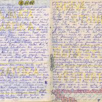 Ak6-Ilzes-Spergas-dienasgramatas-01-0017