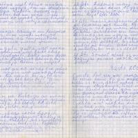 Ak139-Zigridas-Paegles-dienasgramatas-04-0010