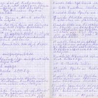 Ak139-Zigridas-Paegles-dienasgramatas-05-0008