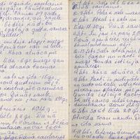 Ak139-Zigridas-Paegles-dienasgramatas-06-0058