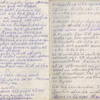 Ak139-Zigridas-Paegles-dienasgramatas-06-0059